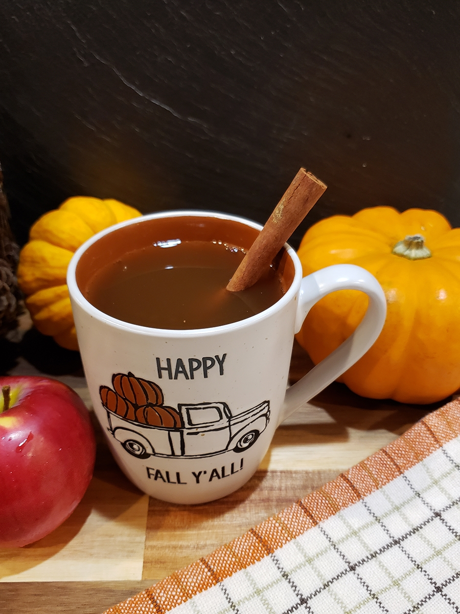 Mulled Apple Cider–Slow Cooker Style!